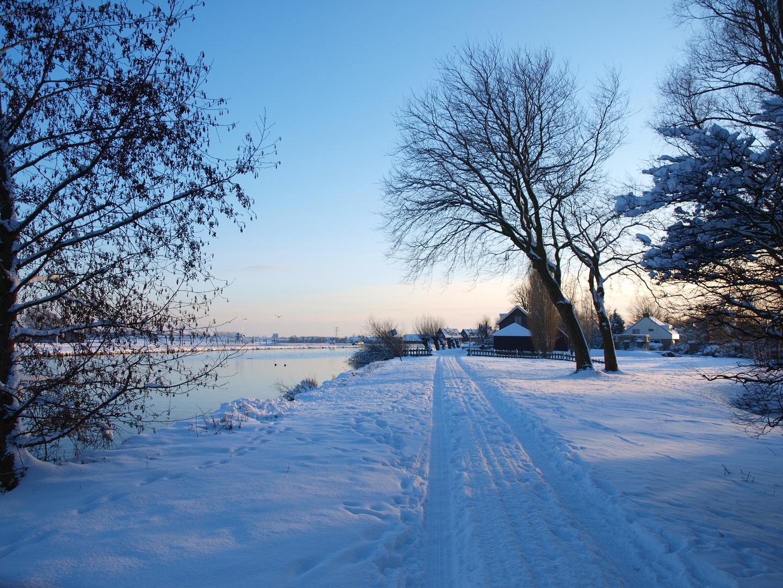Winter in Hillegom