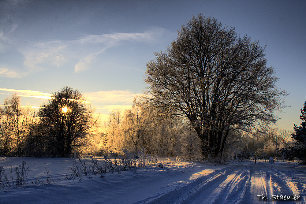 Winter in Höfer 1