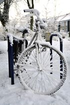 Winter in Holland 7