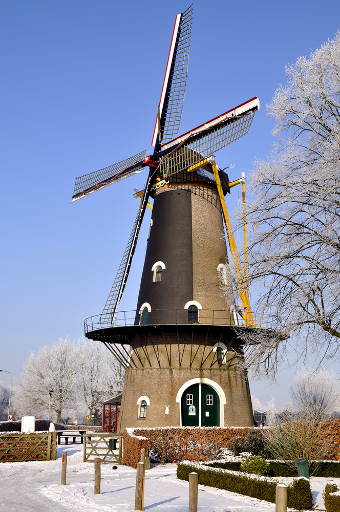 Winter in Holland 8