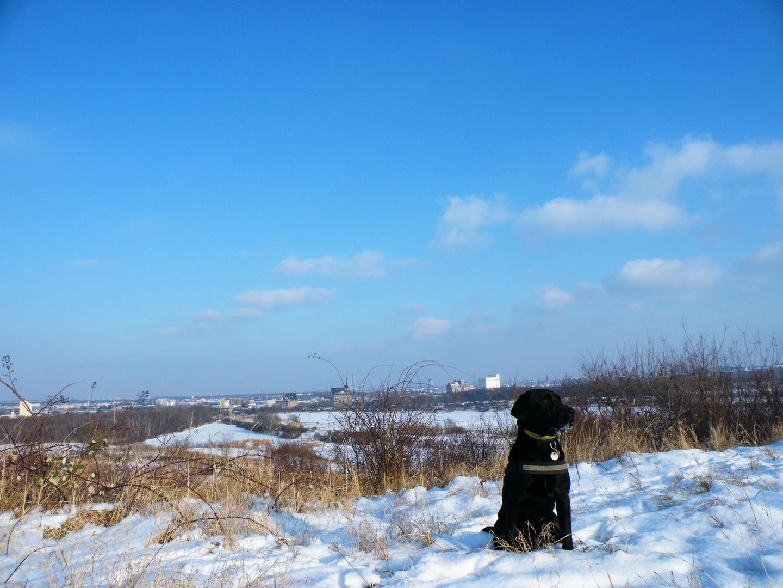Winter in LE