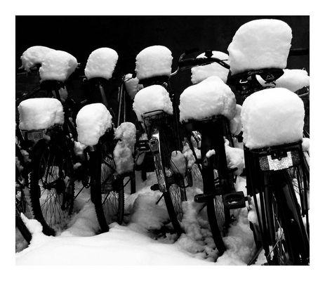 Winter in Lund -3-