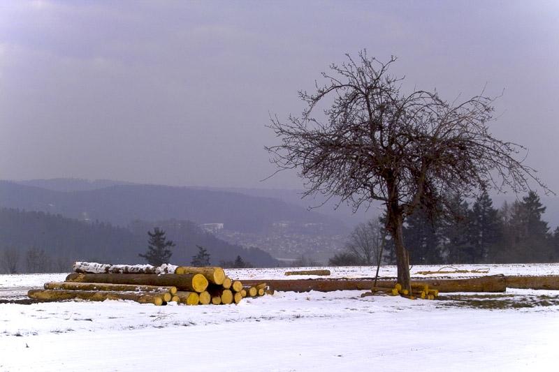 Winter in Murrhardt