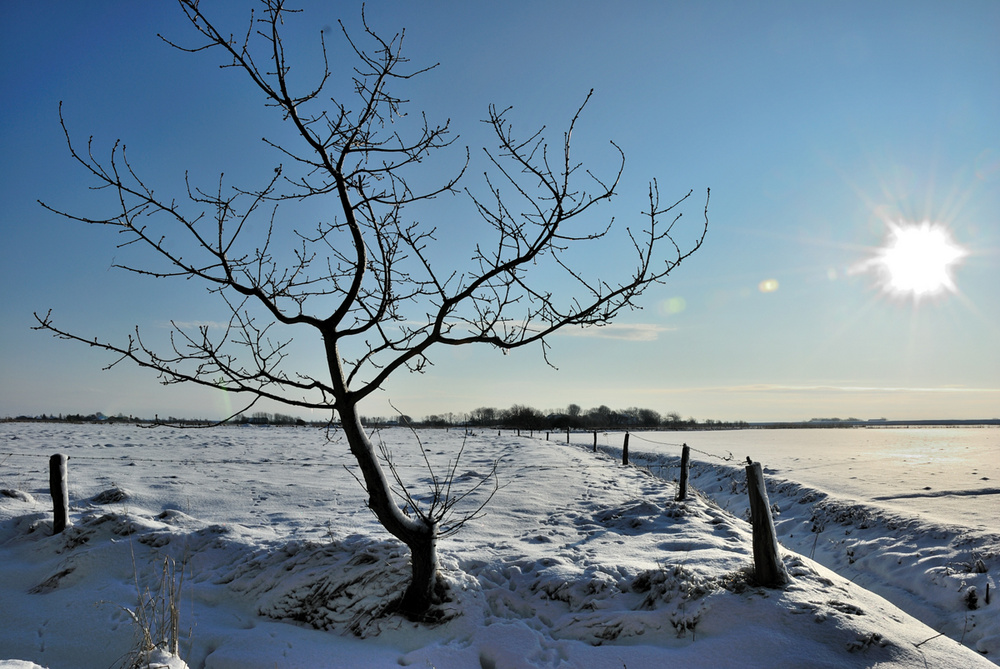 Winter in Nordfriesland