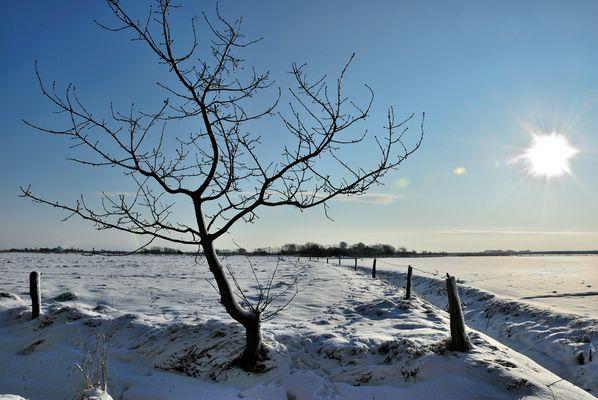 Winter in Nordfriesland