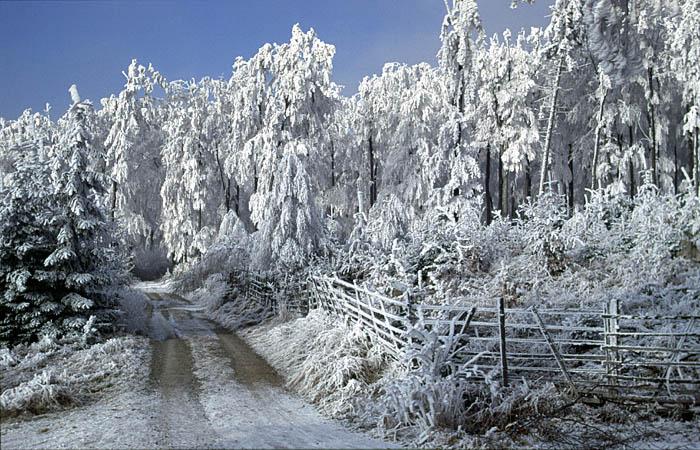 winter in nordhessen