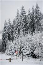 Winter in Nordhessen II