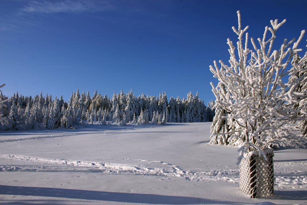 Winter in Oberhof 2006