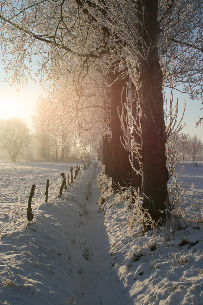 Winter in Oedt
