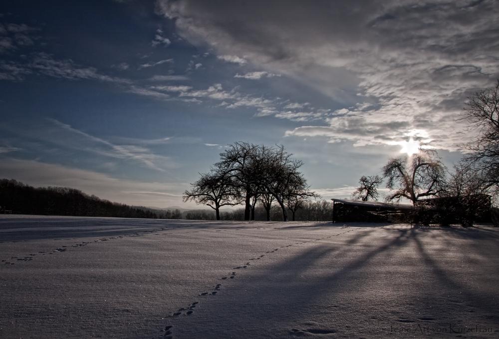 Winter in Oesbern
