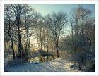 Winter in Ostholstein