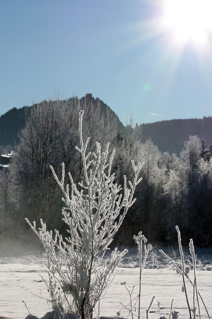 Winter in Pfronten 2010
