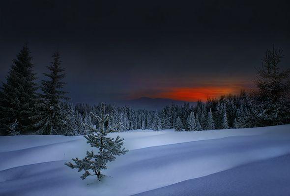 Winter in Rodopi Mountain