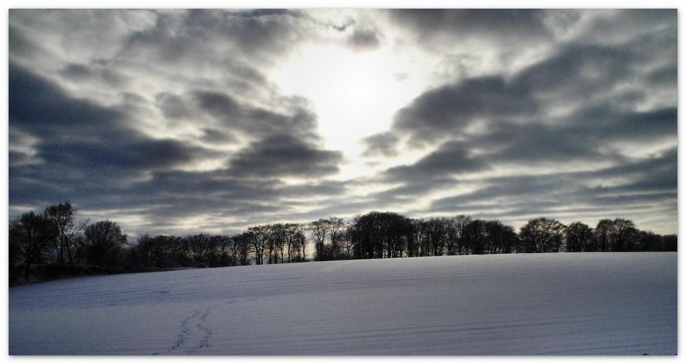 Winter in Steinbergen