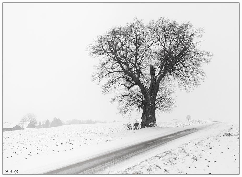 Winter in s/w