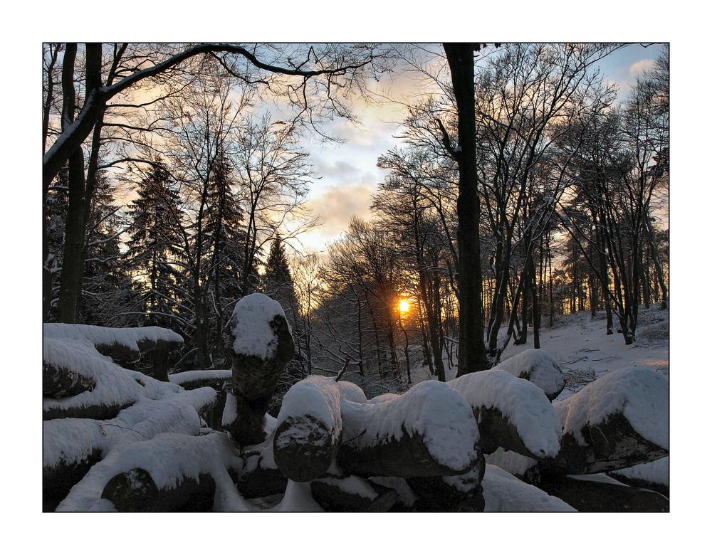 Winter in Teutoburgerwald 1