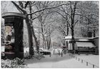 winter in the city-1