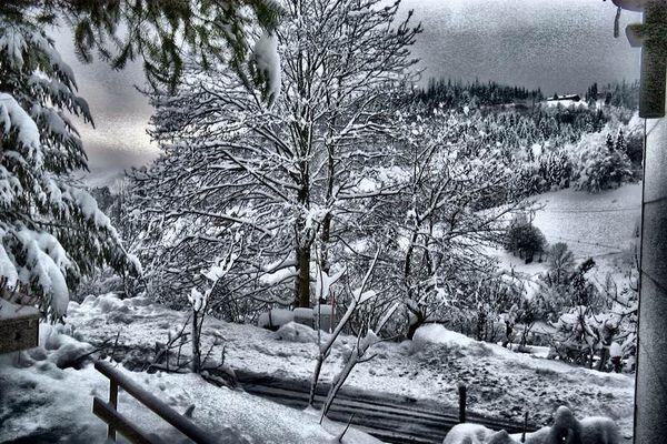 Winter in Todtnau