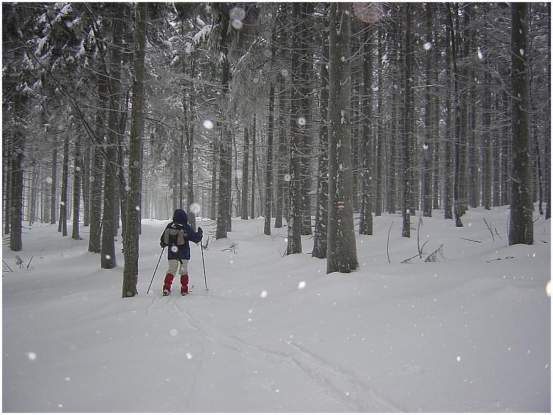 Winter in Tschechien I