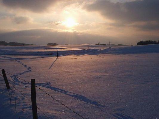 Winter in Unering