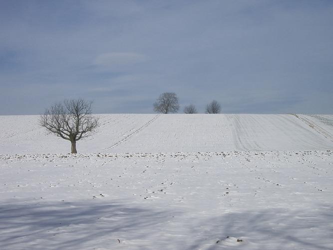 Winter in unserer Region