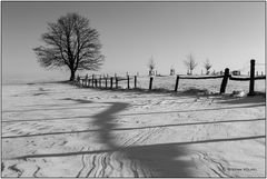 Winter in Wittgenstein II