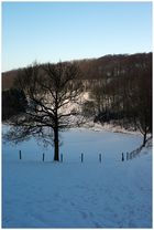 Winter in Wuppertal