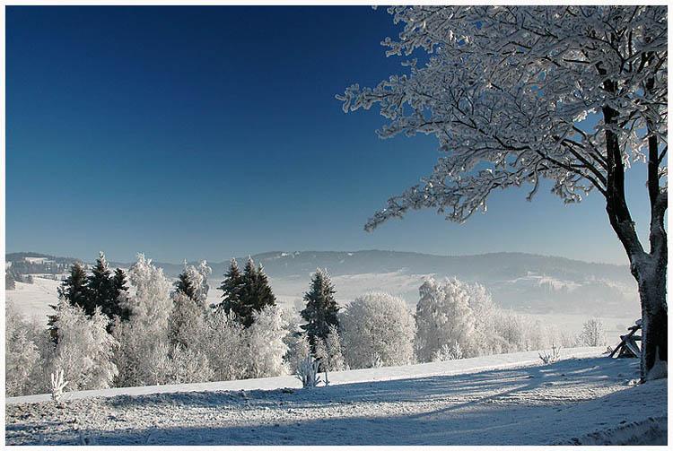 Winter in Zakopane - Polen