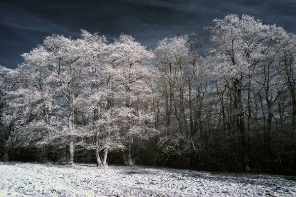 Winter Infrarot Fotografie