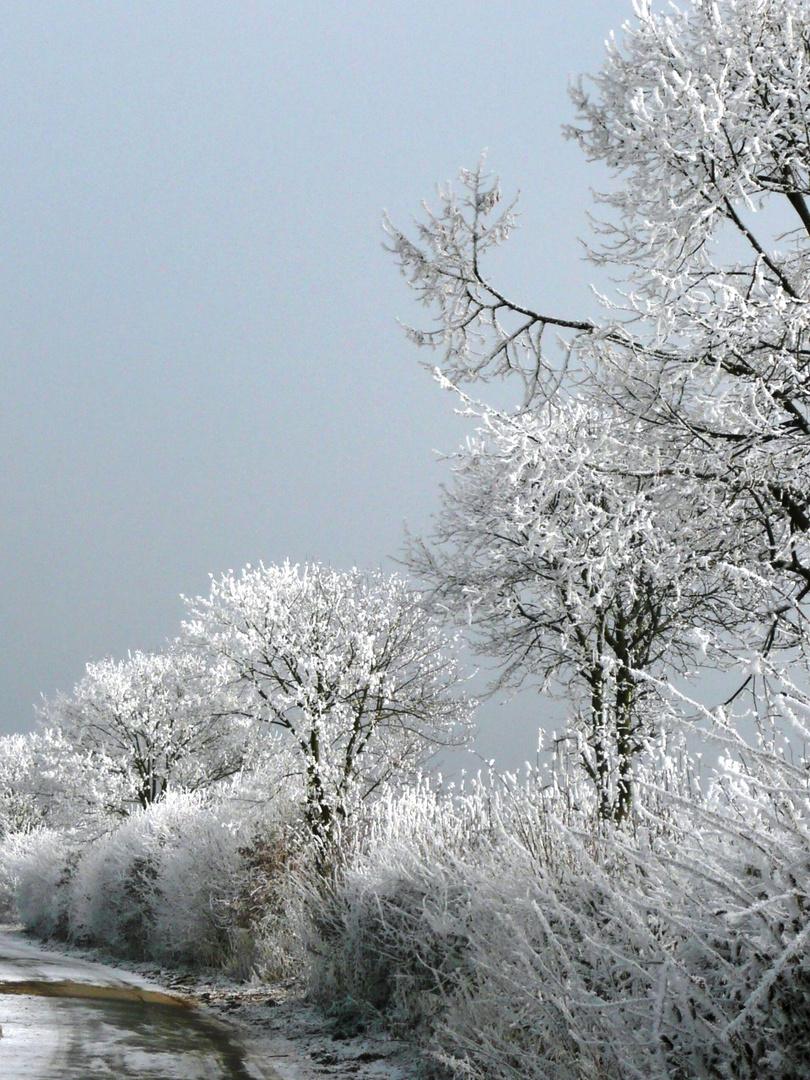 Winter ist schön!