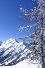 Winter ist schön