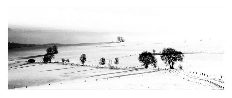 Winter IX