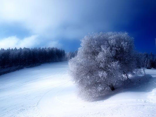 Winter kann auch . . .