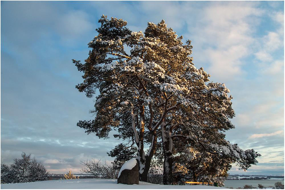 Winter kann so schön sein..