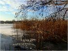 Winter kann so schön sein - Wakenitz