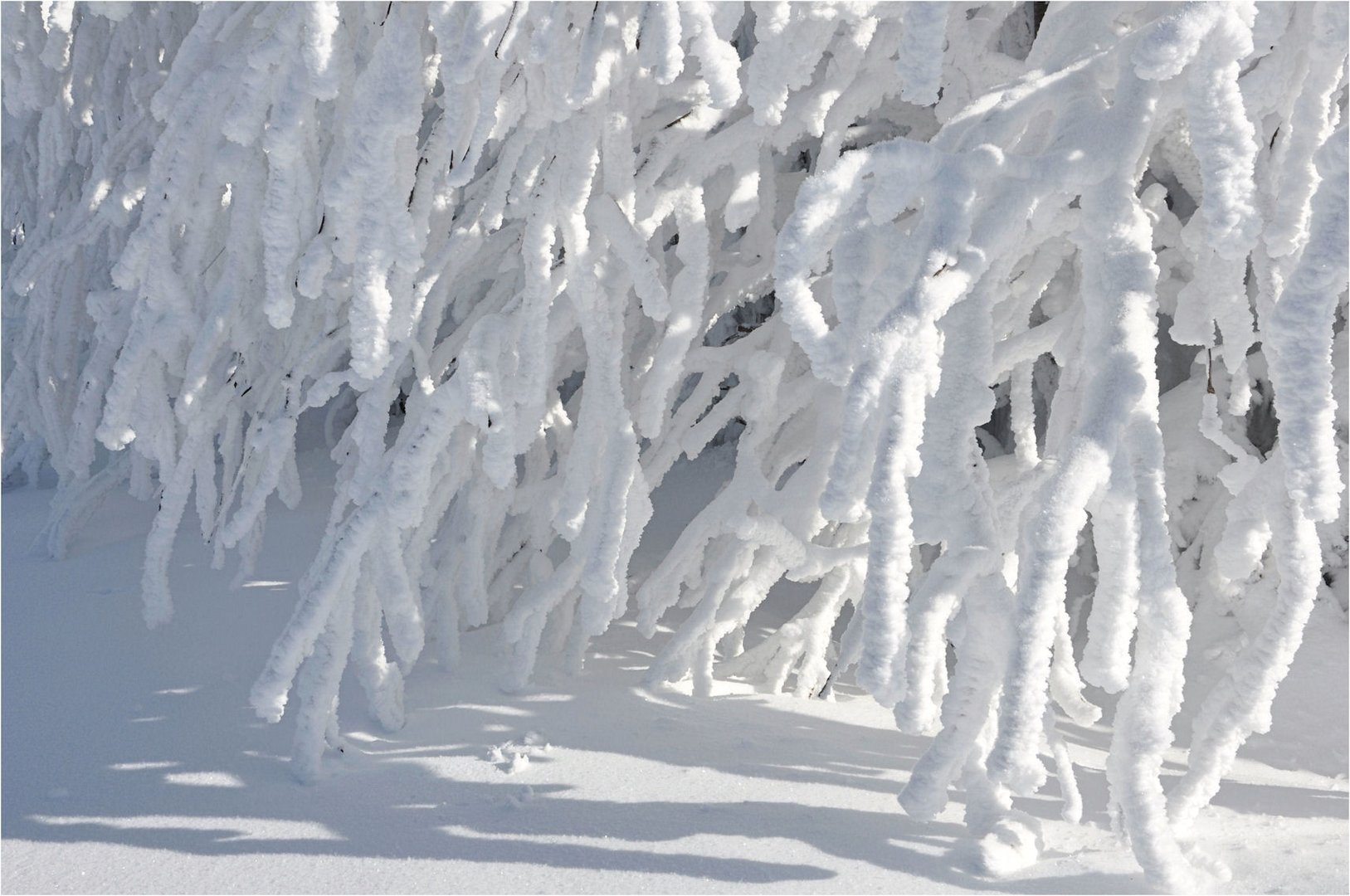 Winter - MÄRCHEN