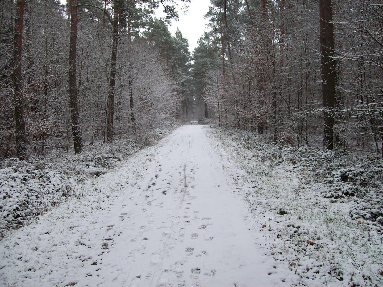 Winter Melankolie