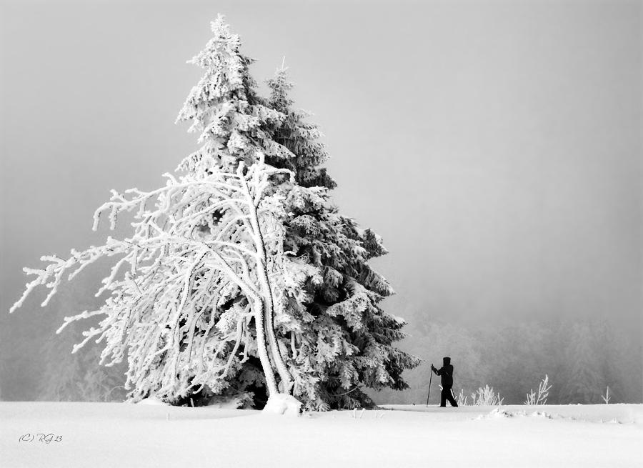 winter-mensch