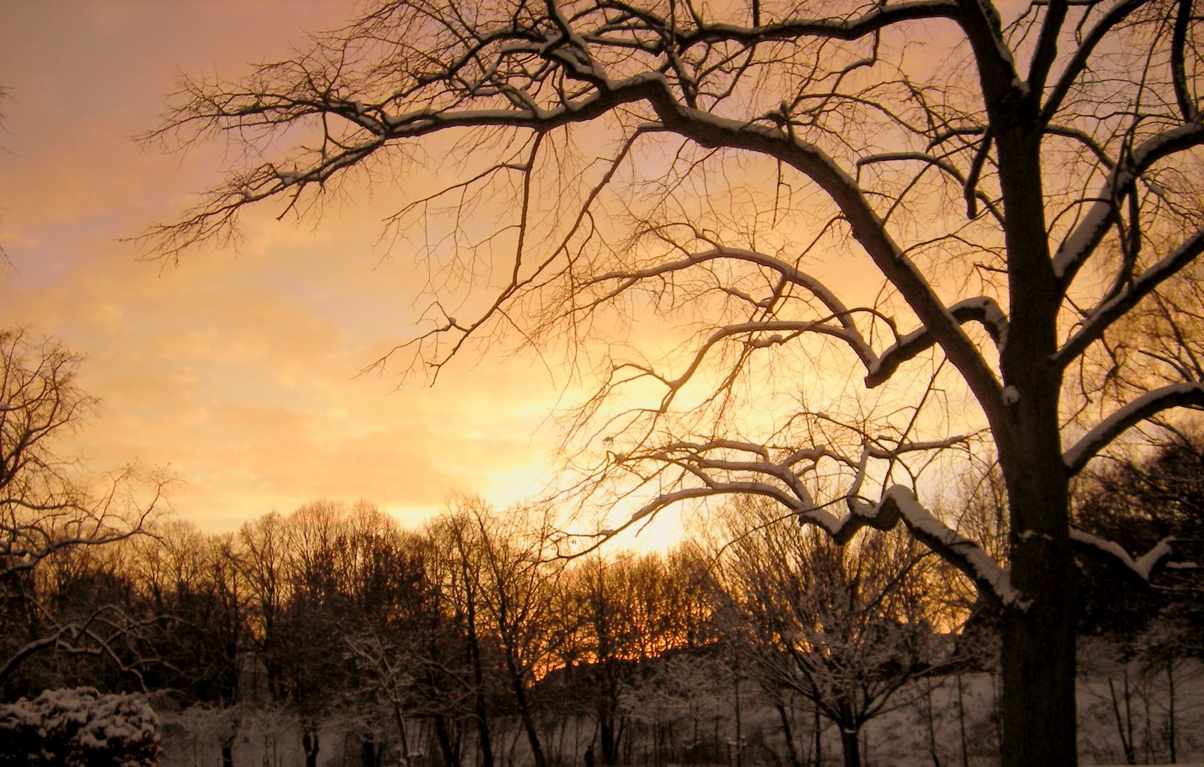 Winter Moments II