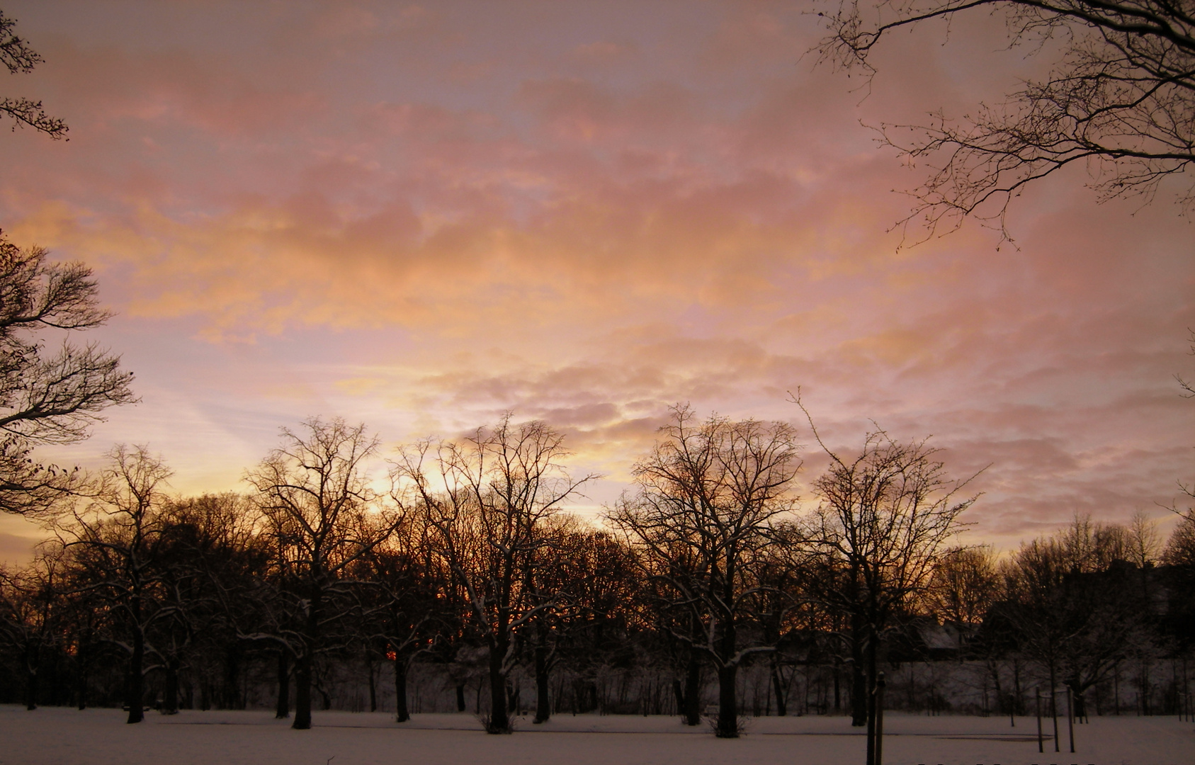 Winter Moments III