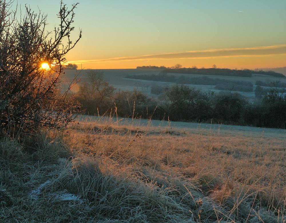winter morning light (1)