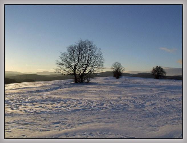 Winter-Nachmittag (1)