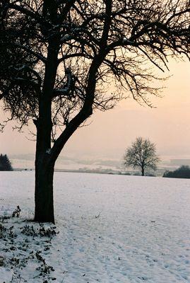 Winter-Nachmittag