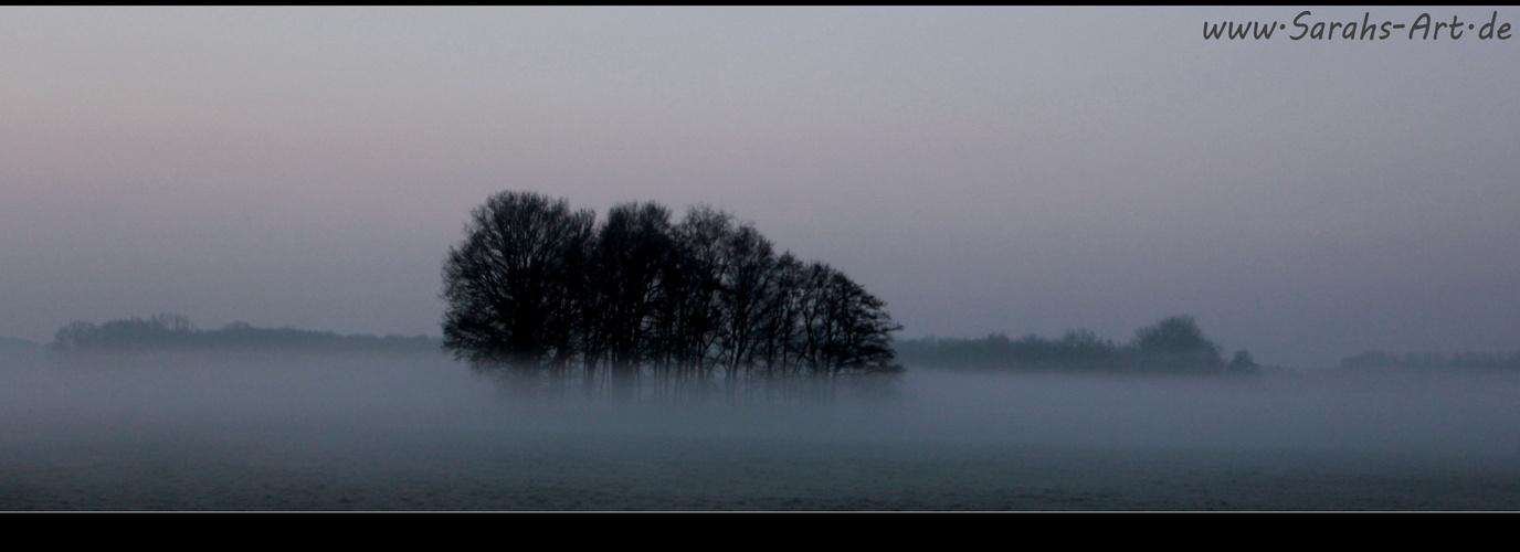Winter-Nebelmorgen