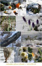 Winter ohne Ende