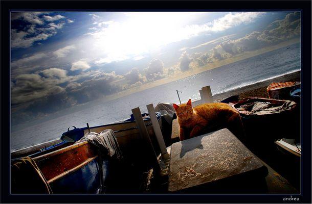 WINTER ON SEA # 4