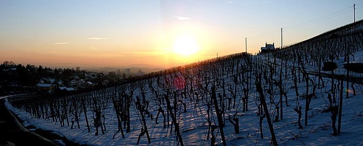 Winter-Panorama-1