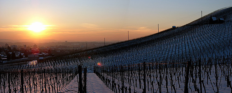 Winter-Panorama-2