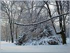 Winter park serie