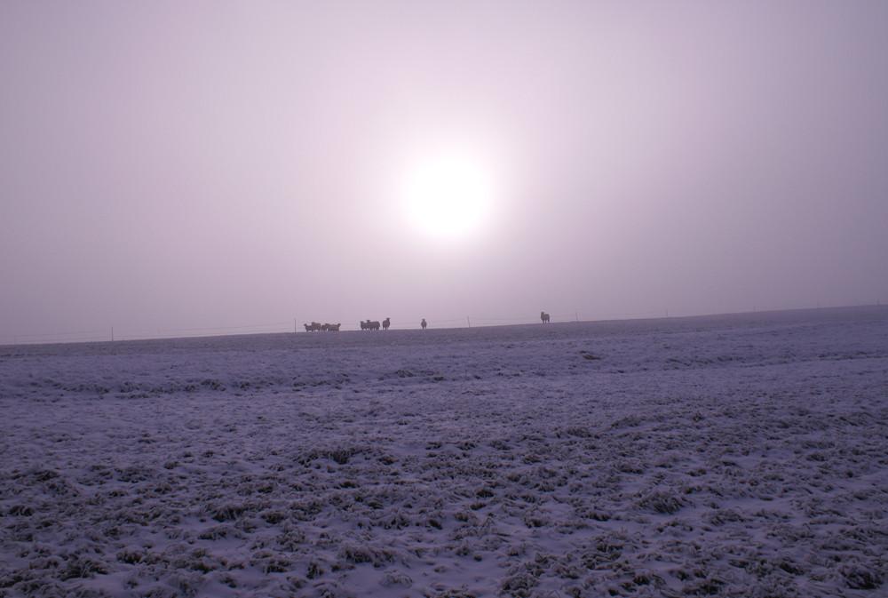 Winter-Pastorale